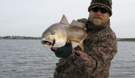 redfish-4.jpg